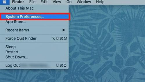 Apple network preferences