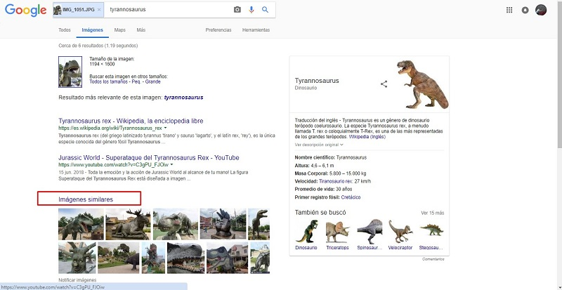 search images based on similar photos images google box