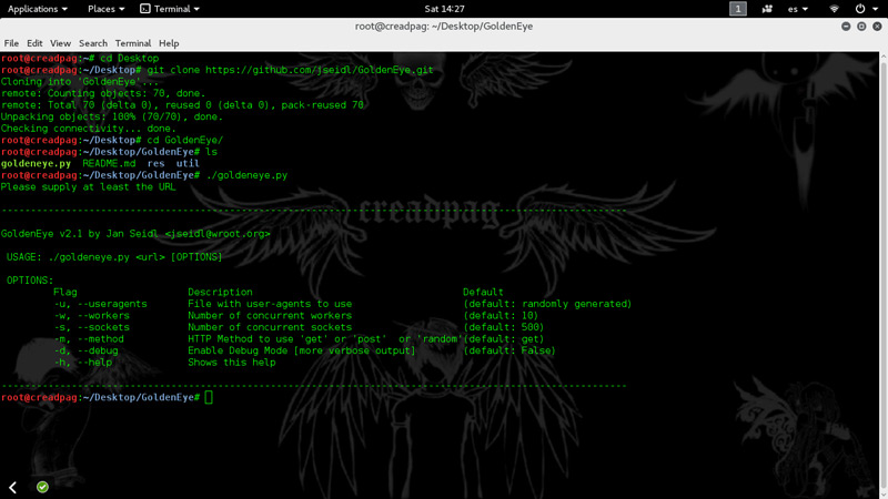 do a DDoS attack from Kali Linux