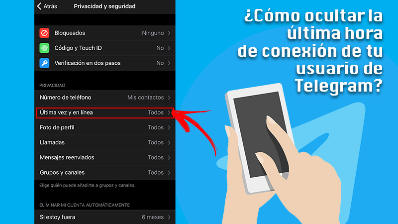 Learn step by step how to hide the last connection time of your Telegram user